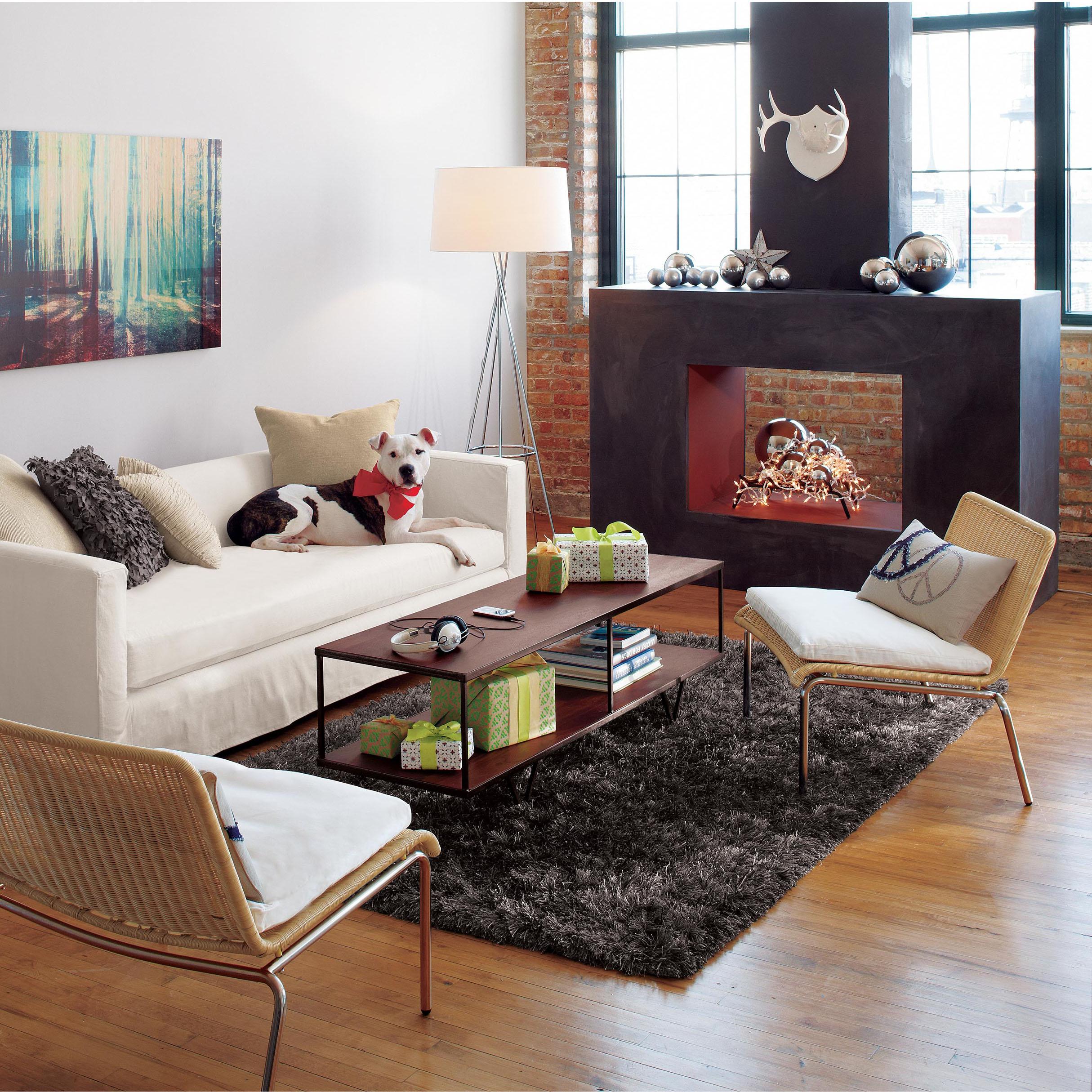 CB2_living-room_fireplace_molly-fitzsimons.jpg