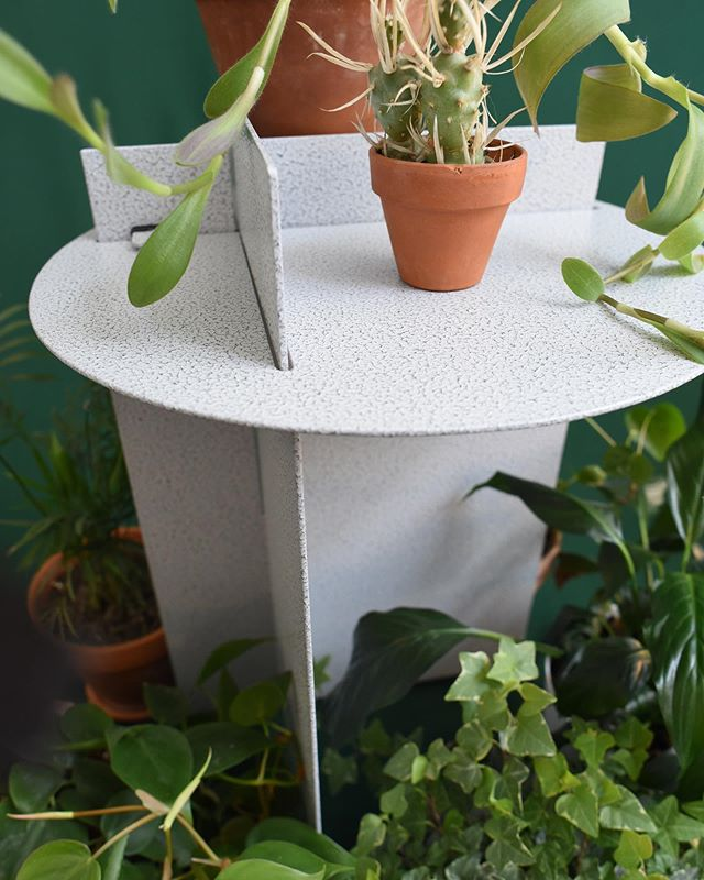 """""""There are some four million different kinds of animals and plants in the world. Four million different solutions to the problem of staying alive."""" -David Attenborough, Life on Earth (1979)  We hope you help keep Fink Furniture alive when we launch the Fink Side Table on Kickstarter this July!"""