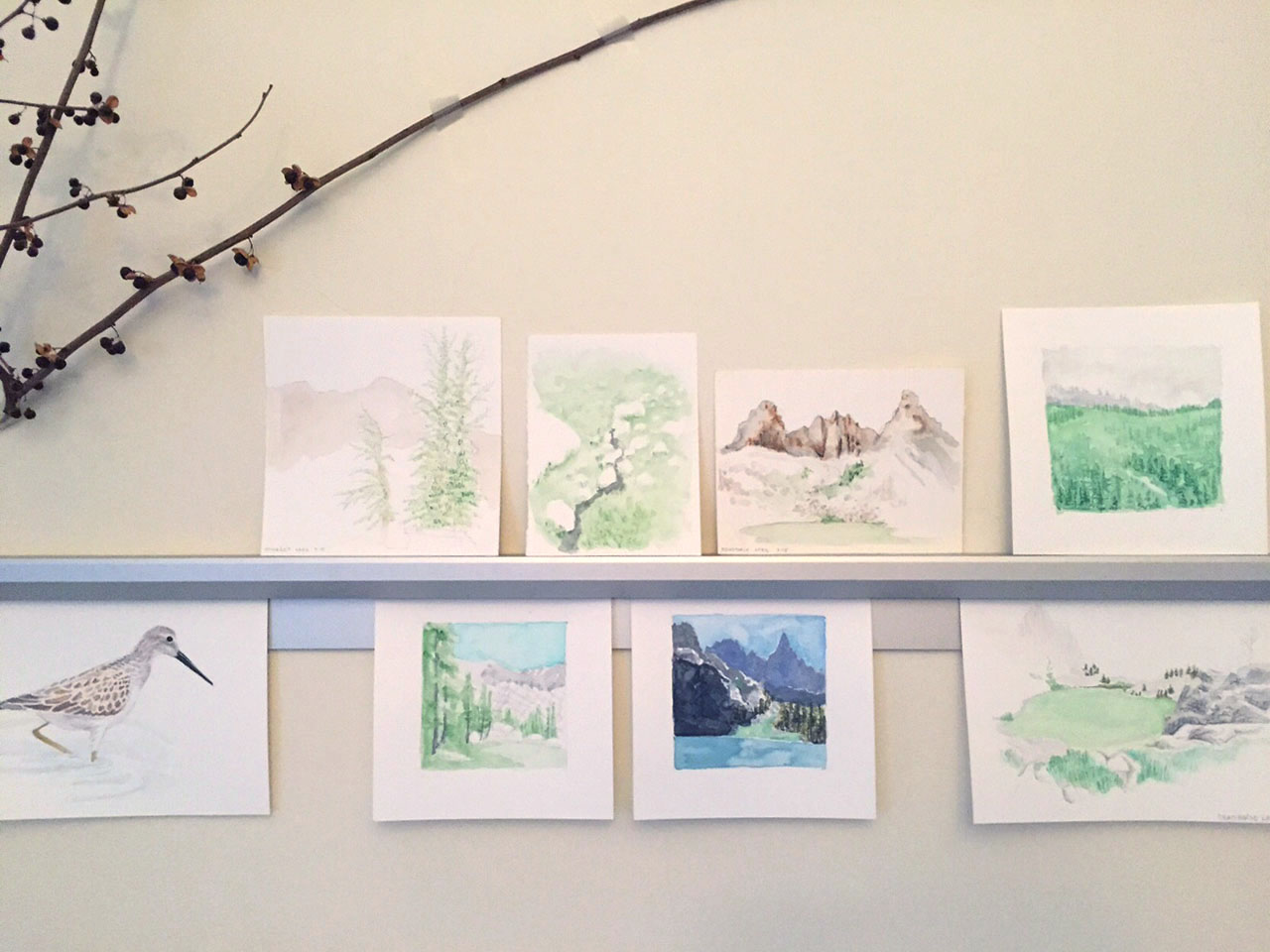Studio, Nature Drawings