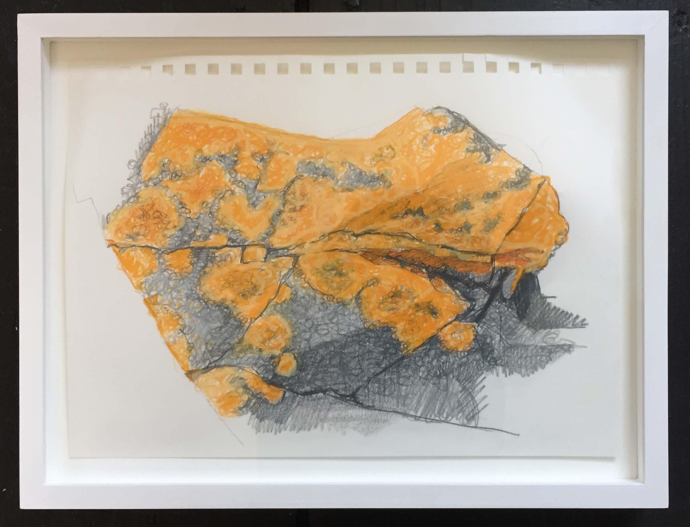 lichen plaid 2_break_8.75x12_09.jpg