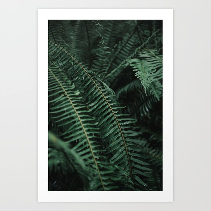 SHOP MY PHOTOGRAPHY ON SOCIETY6 -