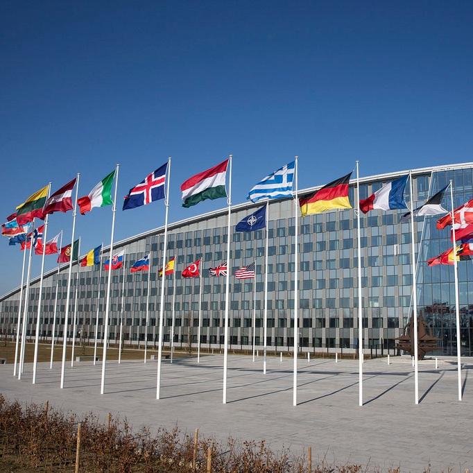 Maximizing NATO for the War on Terror -