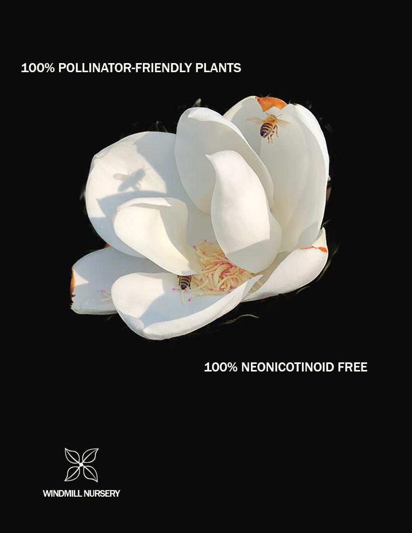 Pollinator Ad.png