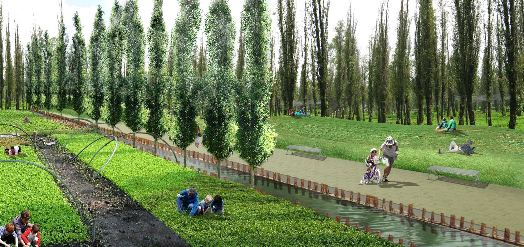 Plan Maestro de Xochimilco - Ciudad de México