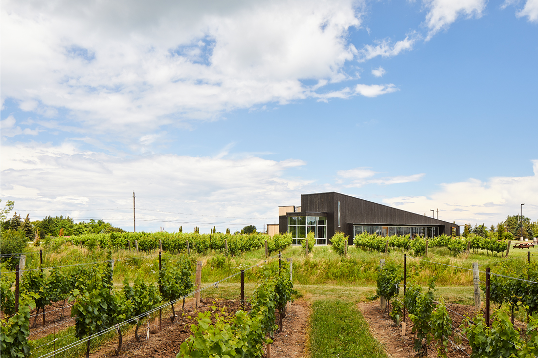 021-Thier Curran Lakeview Winery.jpg