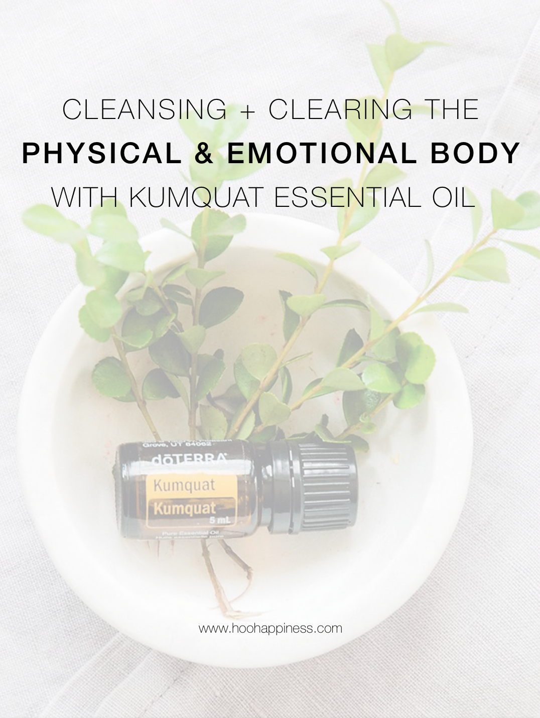 Cleansing + Clearing the Physical & Emotional Body with Kumquat Essential Oil
