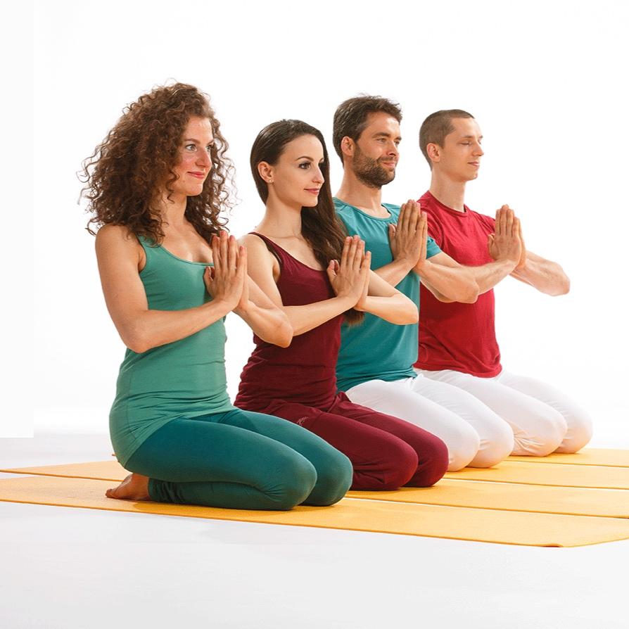 Yoga Vidya Freiburg Katharinenstraße 15, 79104 Freiburg