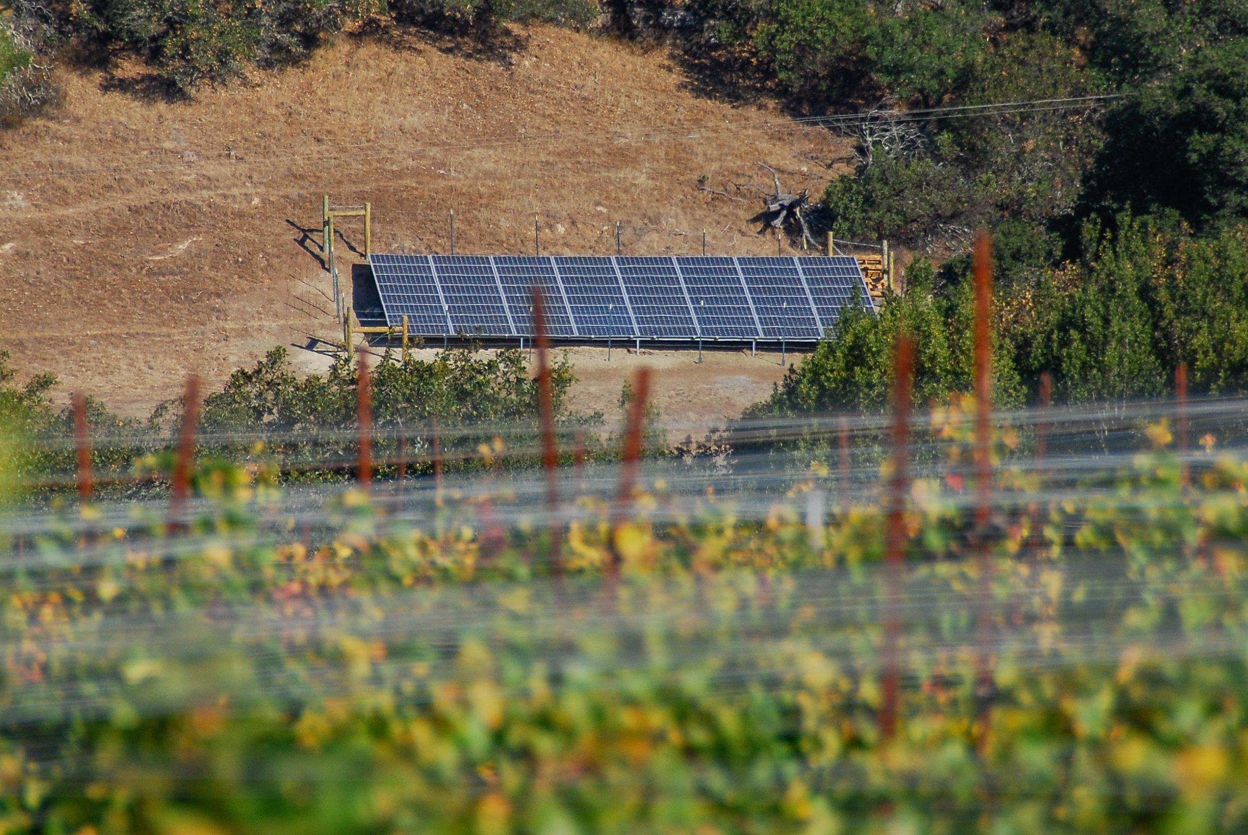 new sustain solar-0061.jpg