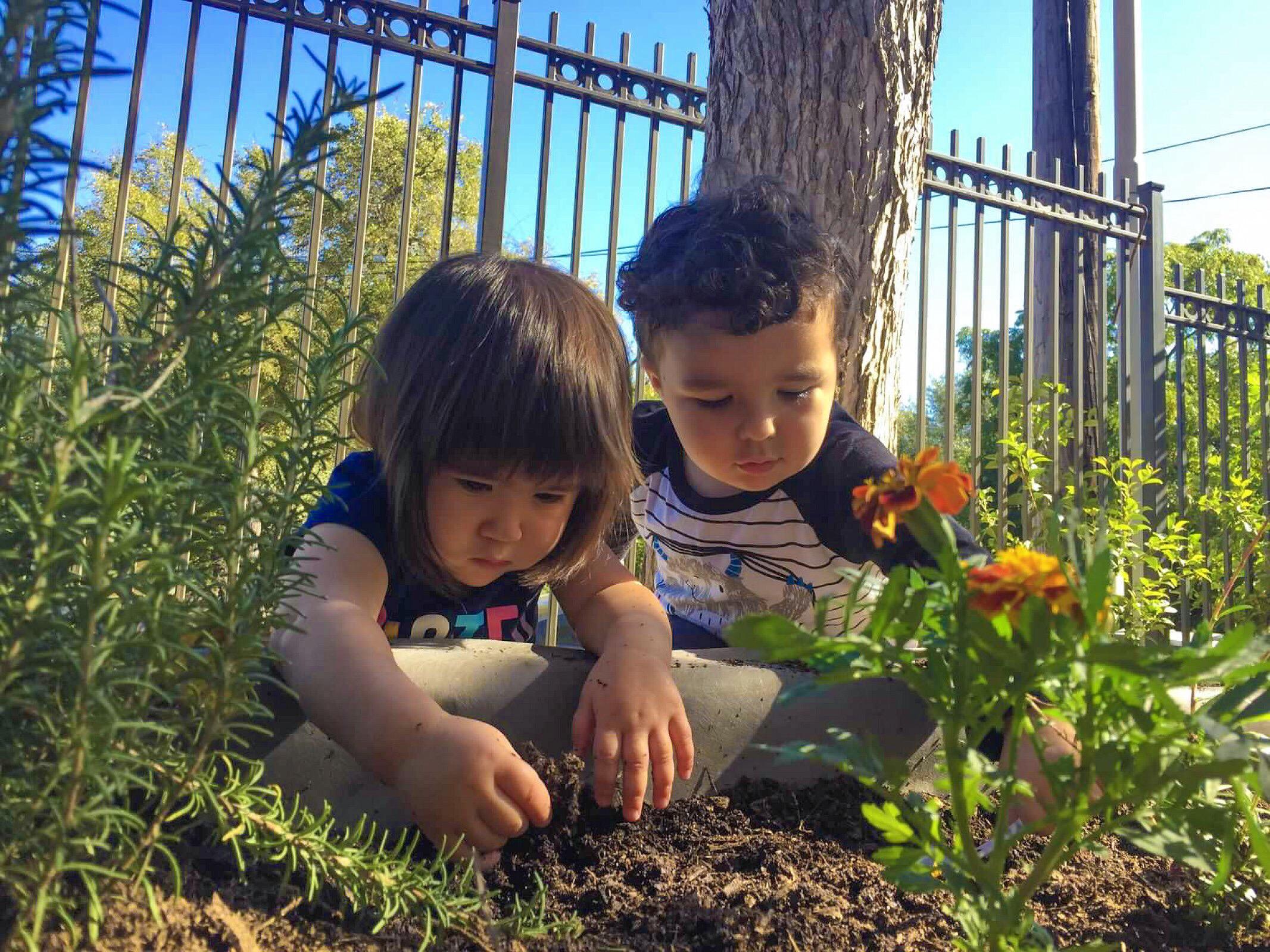 Program Toddlers 3.JPG