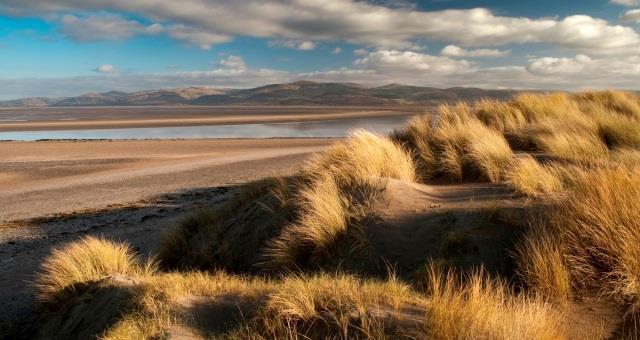 Ynyslas beach - looking north towards the Dyfi estuary (about 30 miles)