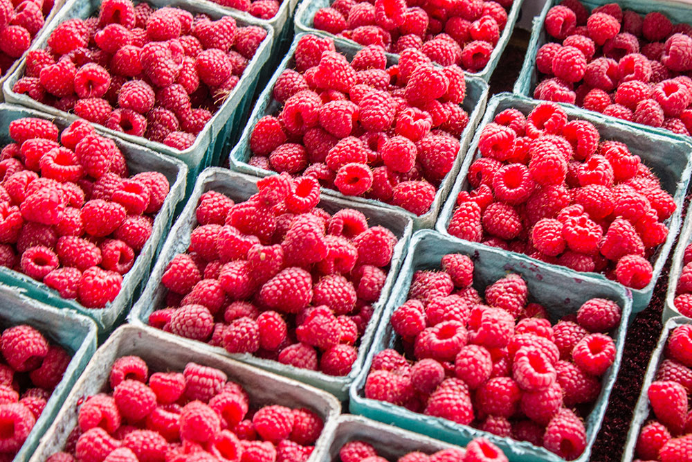 cashins-farms-raspberries.jpg