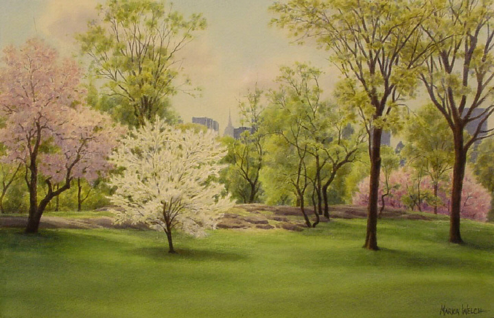 Flowering Trees, Central Park