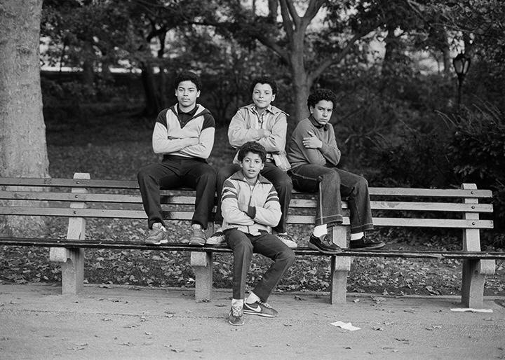 Four Boys, Central Park