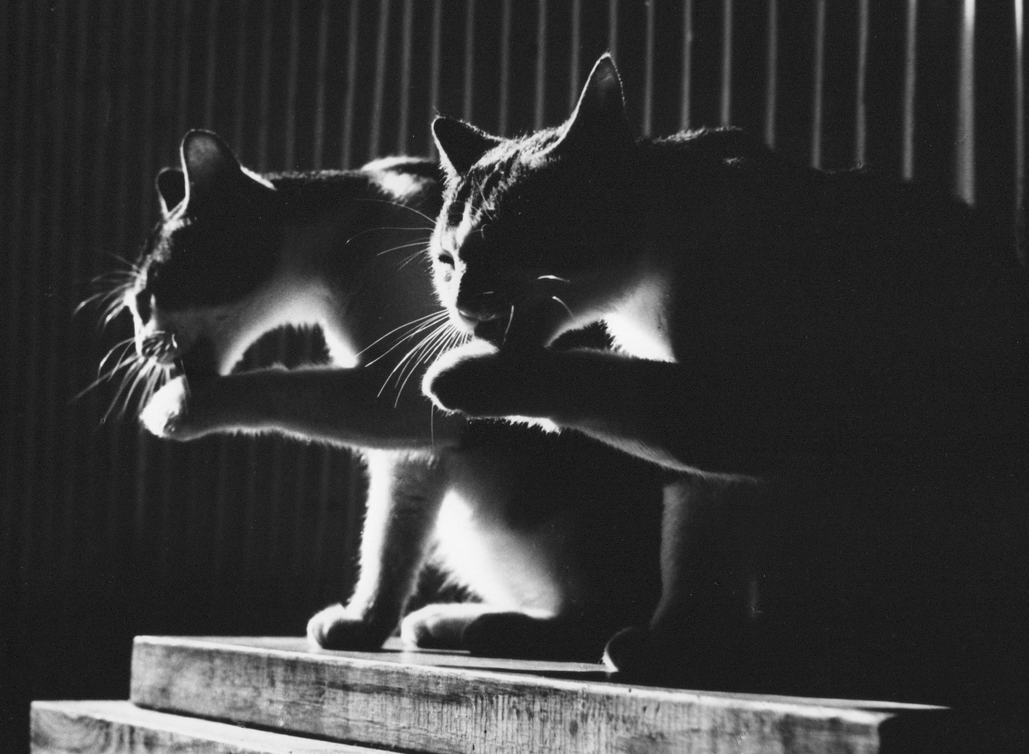 Friends, 1964