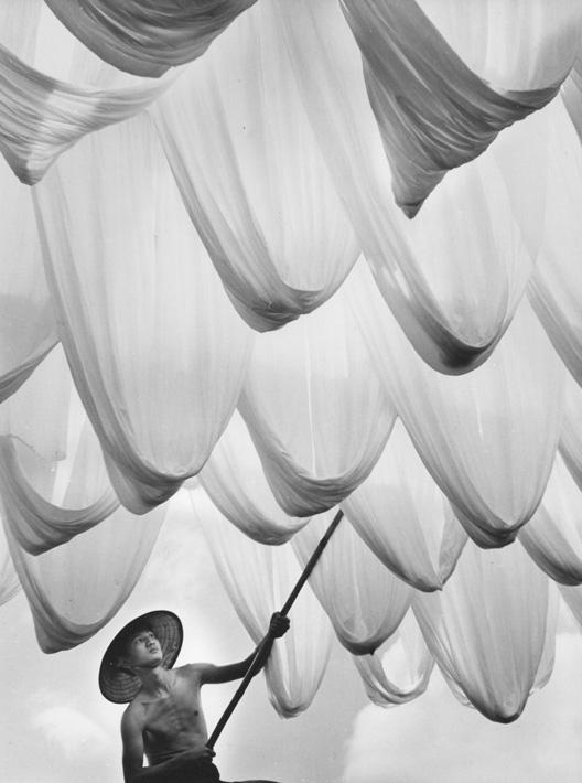 Sunning of Cloth, 1966