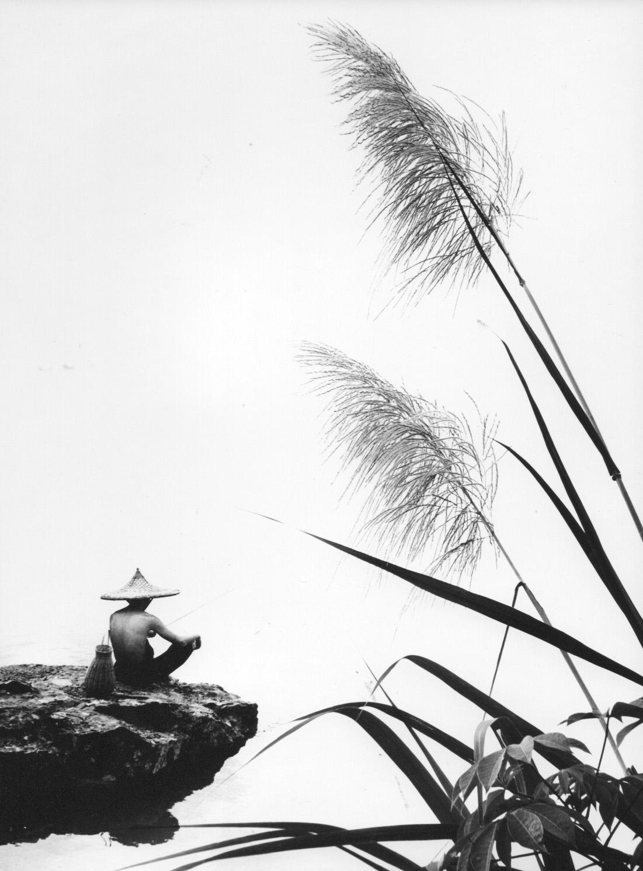 Reeds, 1968