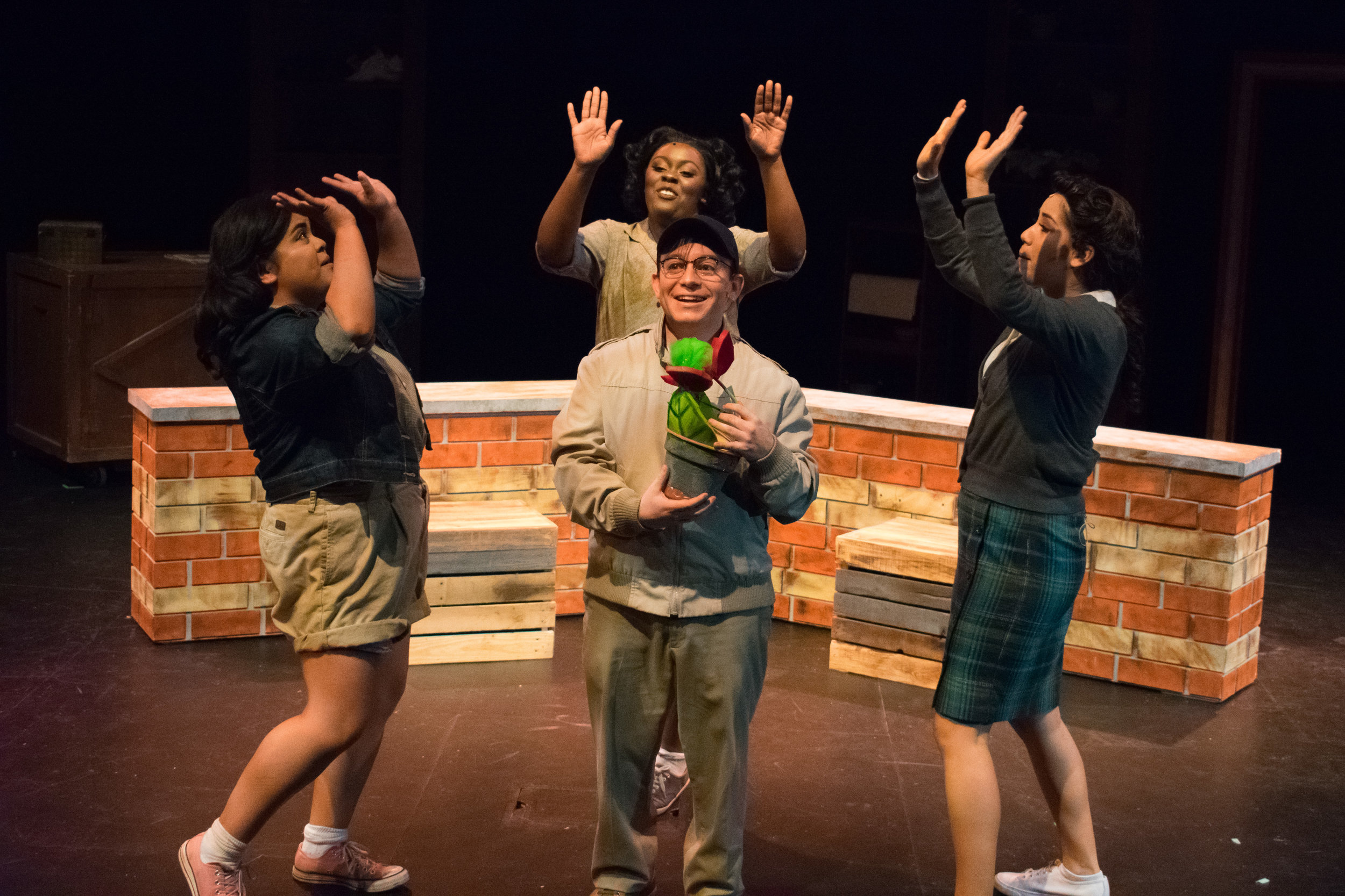 Little Shop of Horrors  at the purplelight theatre company