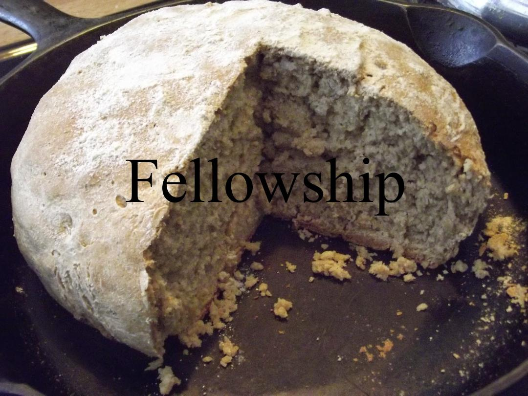 fellowship slide.jpg