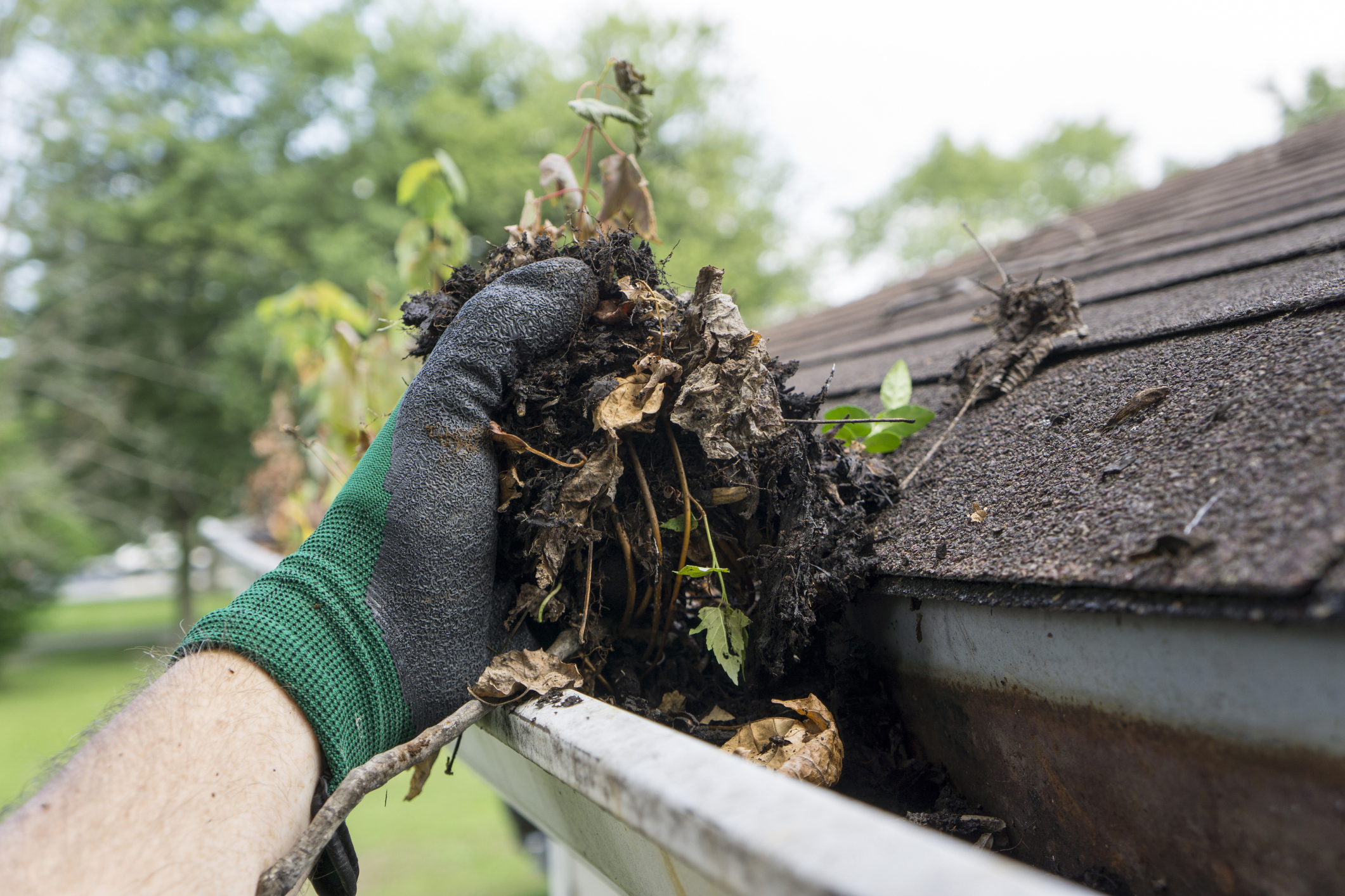 Gutter Cleaning - We also offer seasonal gutter cleaning services