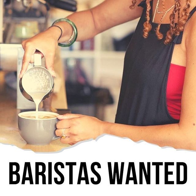 We are looking for great baristas to join our growing team! If your interested send us a DM or email lazyfinstaff@gmail.com