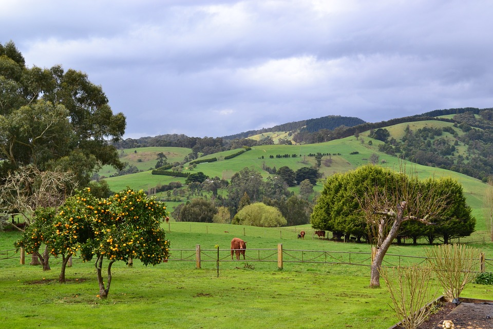 Beautiful South Gippsland Source: Unsplash