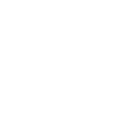 synergy_logo_white.png