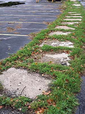 sidewalk copy.jpg