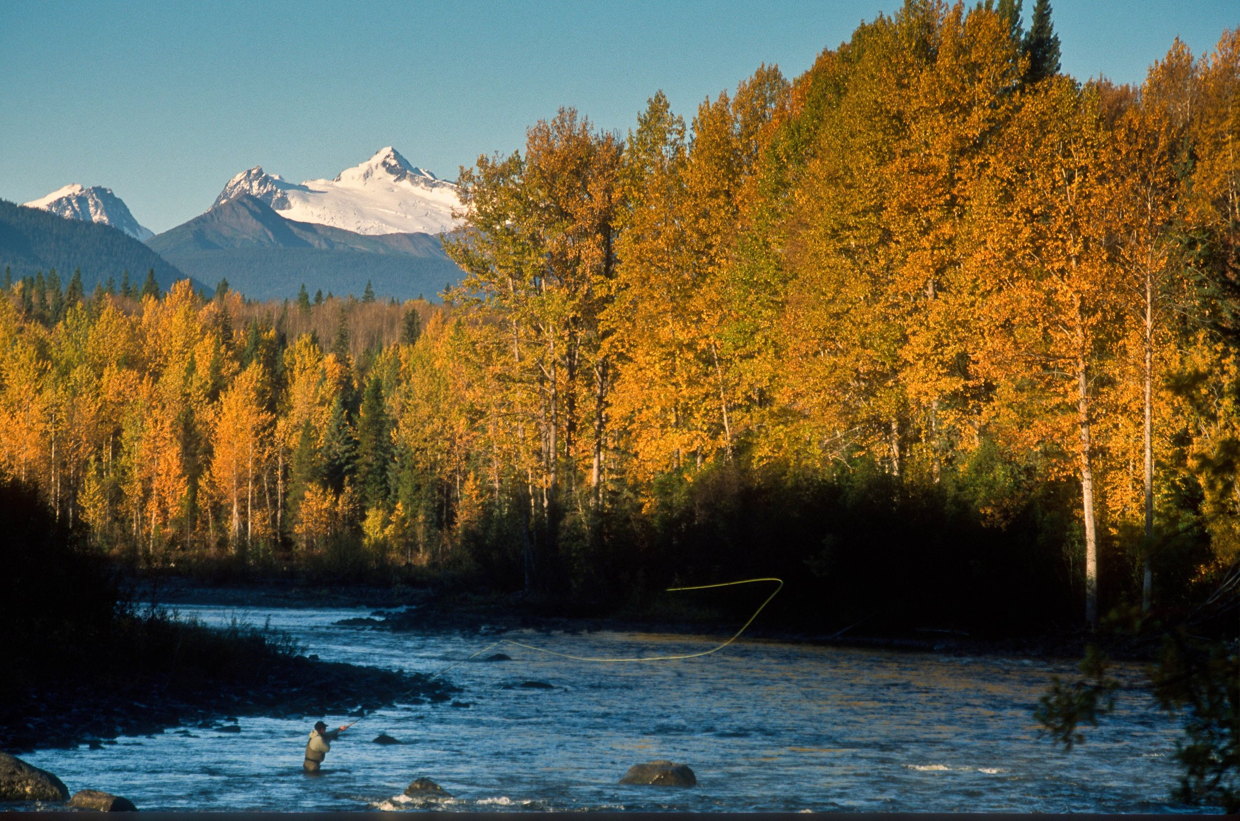 OUR STORY - Learn about The Foundation's efforts towards the preservation of the Babine watershed.