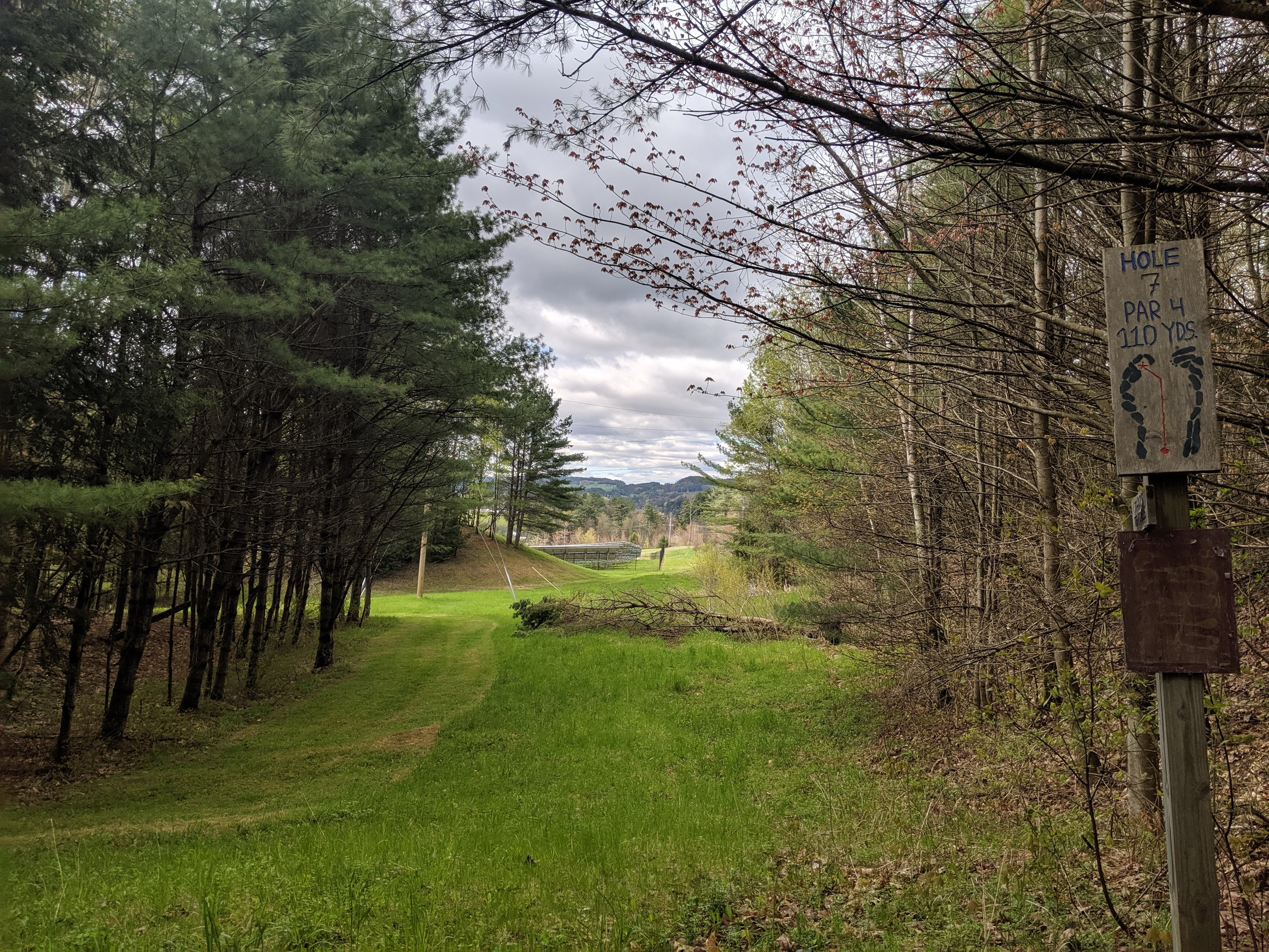 Greens Fees - Foster's Meadow Disc Golf Course is Free to play.