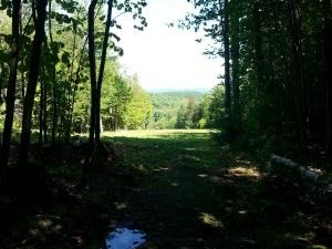 Mount Sunapee - Sunapee, NH