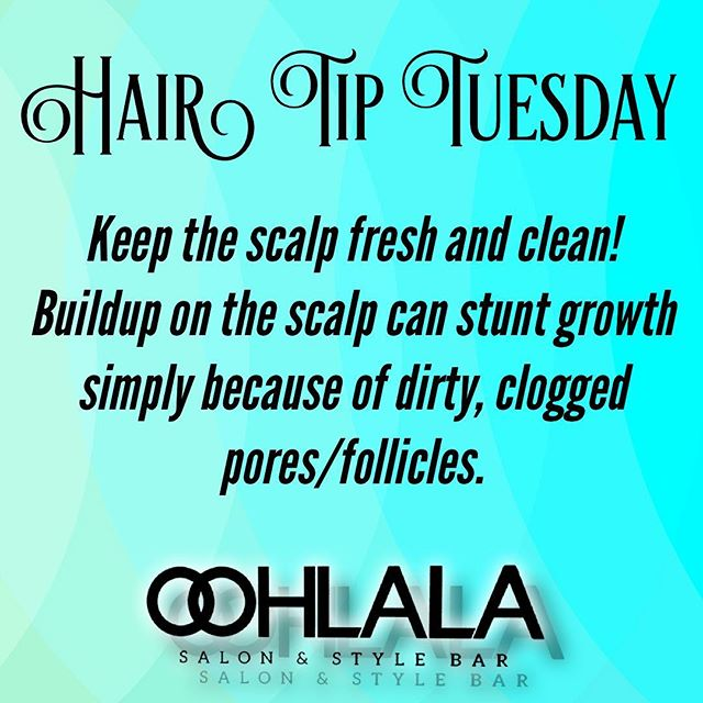 Is your hair summer ready?! ☀️ Do you have dandruff or product buildup?  We offer a great scalp treatment service. Call to book your appointment 610-485-7500  #oohlalasalonandstylebar #oohlalasalonandspa #wherethemagichappens #scalptreatment #scalpmassage #conditioningtreatment #phillyhairstylist