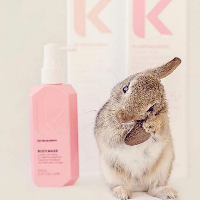 Happy Easter from our family to yours ❤️🐣🐰🐇 We are beyond excited about our newest addition. We now offer the full line of KEVIN MURPHY  Forever CRUELTY FREE 💞🐰 #crueltyfree #oohlalasalonandstylebar #oohlalasalonandspa #kevinmurphyproducts #phillyhairstylist #hairproducts #wherethemagichappens