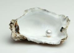 pearl-in-shell.jpg