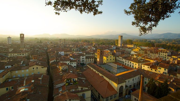Lucca is a town full of charm and surprises, including  t he Piazza dell'Anfiteatro. The buildings surrounding the square are in the circular shape of the former second century Roman Amphitheater.