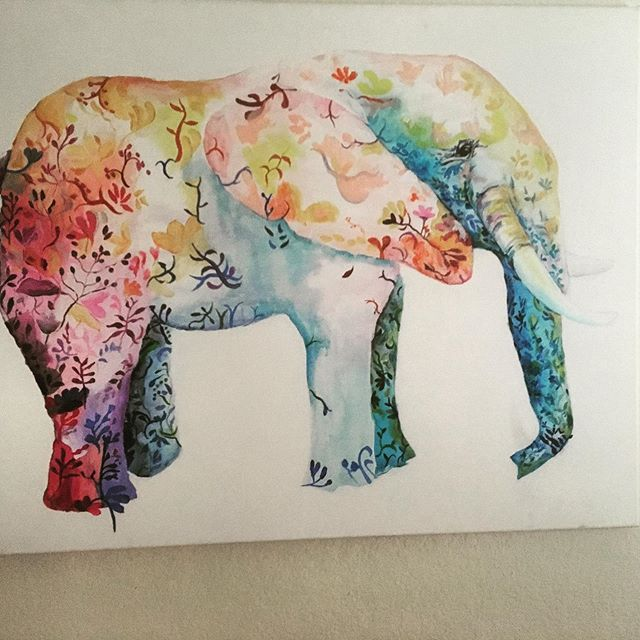 Love elephants. I have a little amethyst one I carry w to births. Remover of obstacles. What do you carry to births to collect energy and/or protect energy?