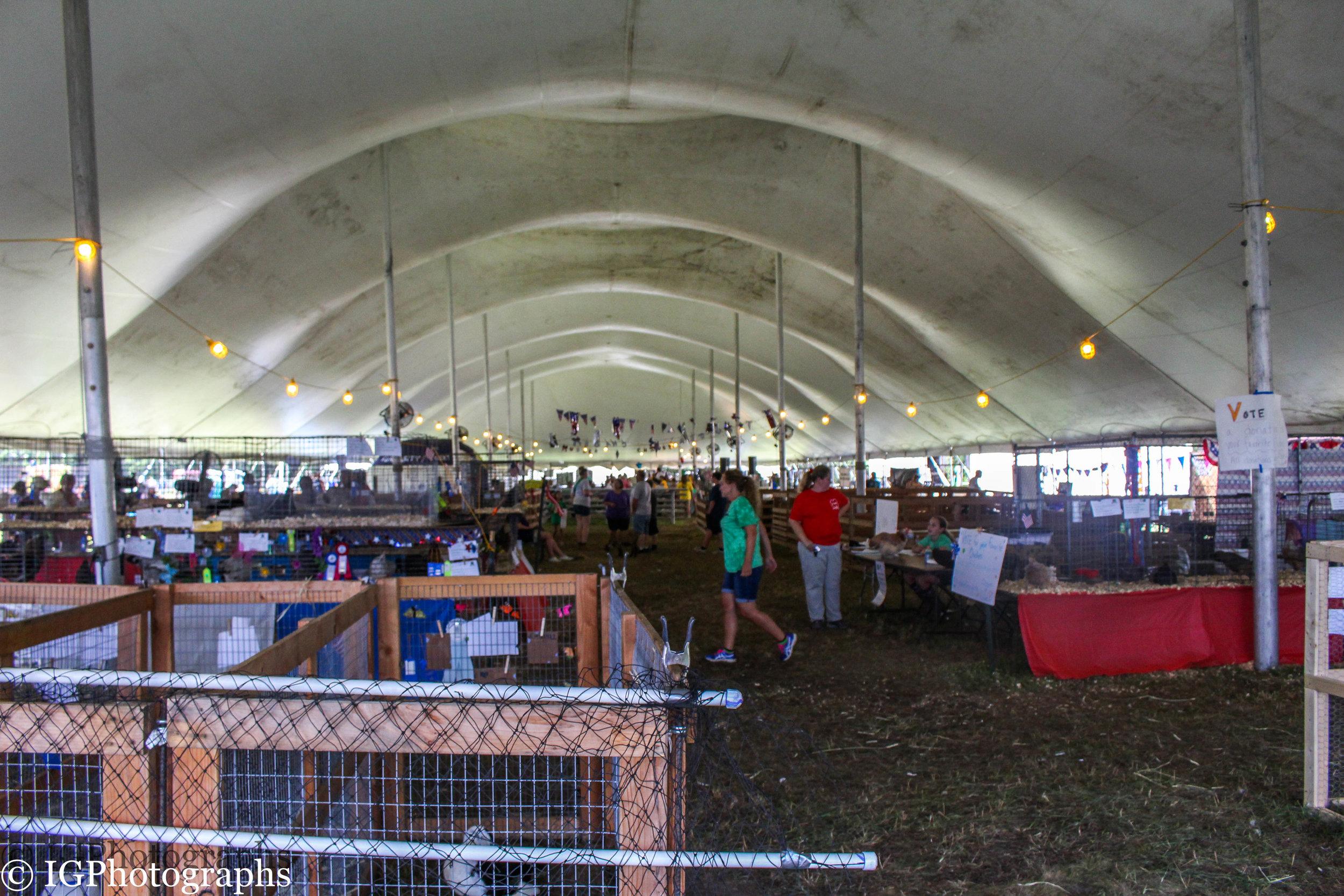 Ocean County Fair 2019-8.jpg