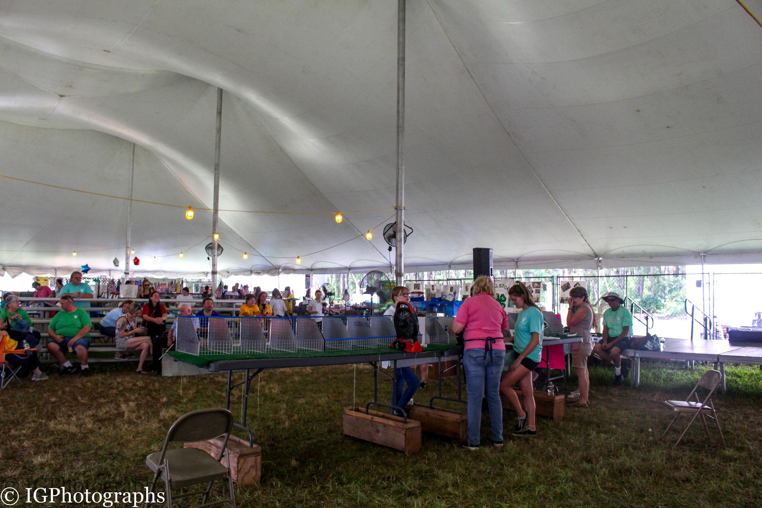 Ocean County Fair 2019-9.jpg