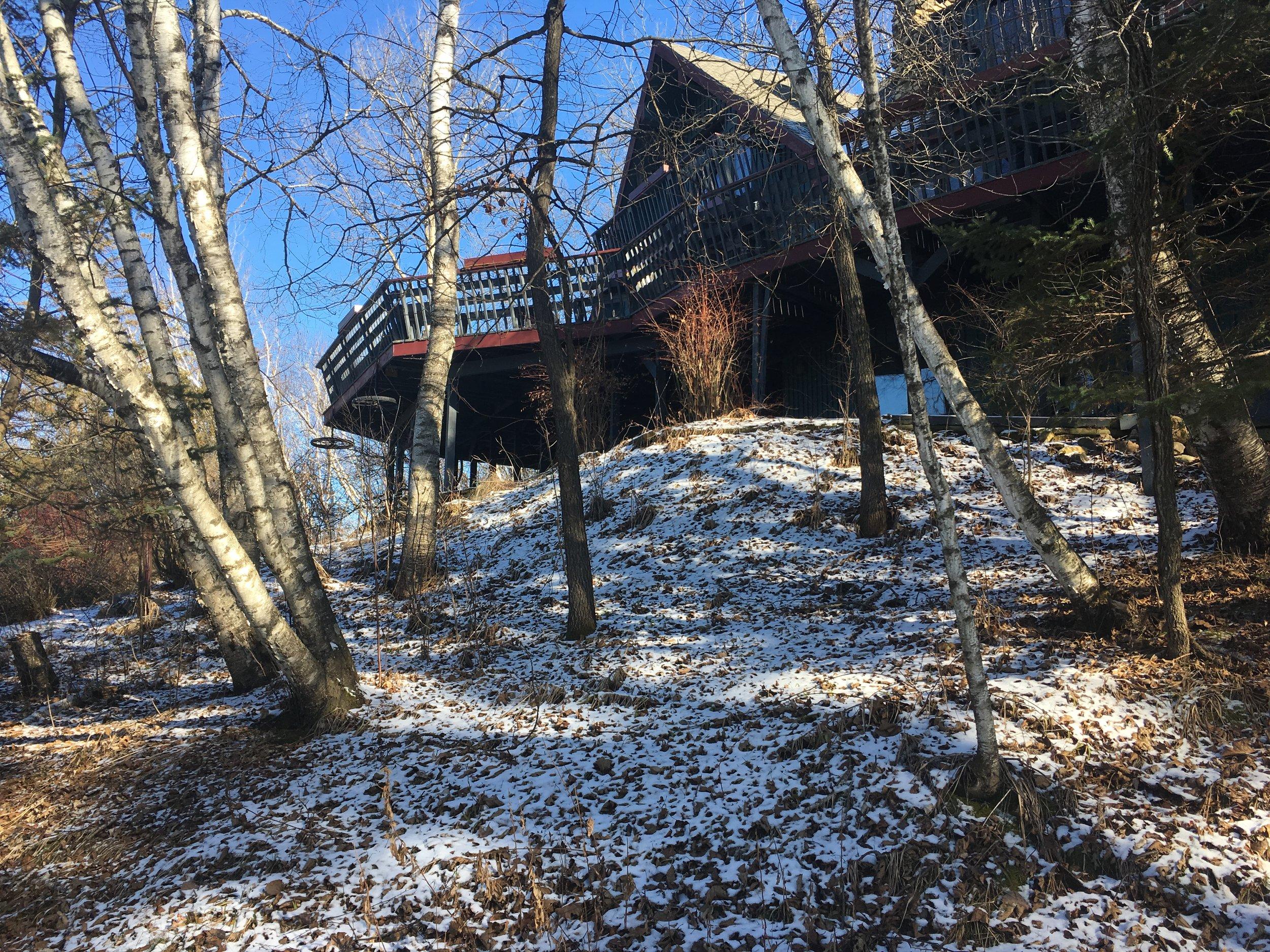 house through birches.JPG