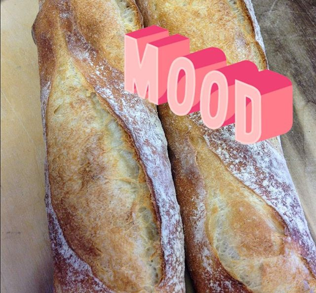 Grand Finale...where fresh bread is most definitely an entire mood on Wednesdays. Stop in and find out why! 💗⠀⠀⠀⠀⠀⠀⠀⠀⠀ .⠀⠀⠀⠀⠀⠀⠀⠀⠀ .⠀⠀⠀⠀⠀⠀⠀⠀⠀ .⠀⠀⠀⠀⠀⠀⠀⠀⠀ .⠀⠀⠀⠀⠀⠀⠀⠀⠀ .⠀⠀⠀⠀⠀⠀⠀⠀⠀ #freshbakedbread #freshloaves #freshbreadingrandhaven #bakeriesingrandhaven #fallbaking #artisanbread #grandhavenbread #handmade #shoplocal
