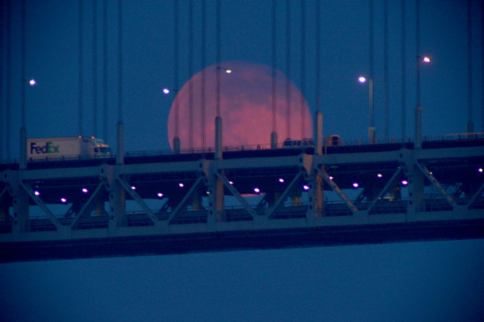 What to look for: Image of the 2016 Strawberry Moon