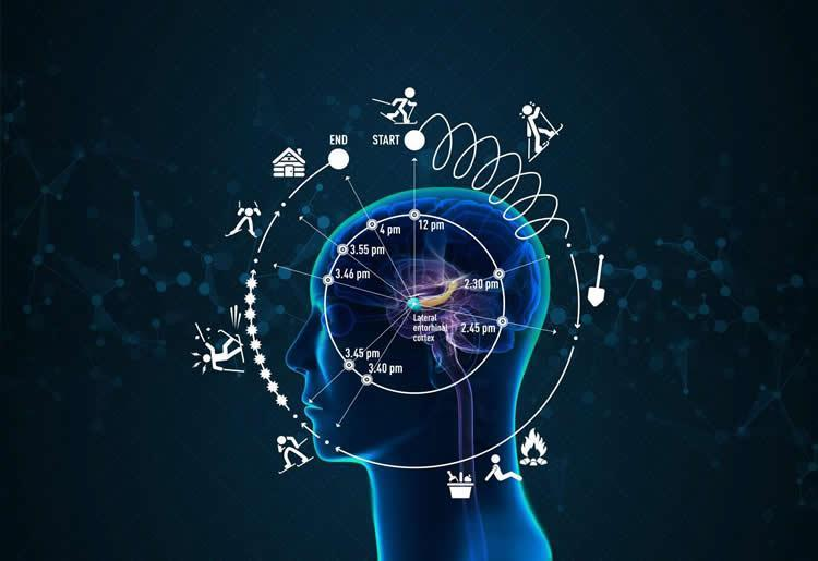 time-memory-perception-neurosciencneews-top-2018.jpg