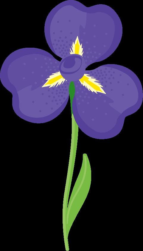 Spring_Iris.png