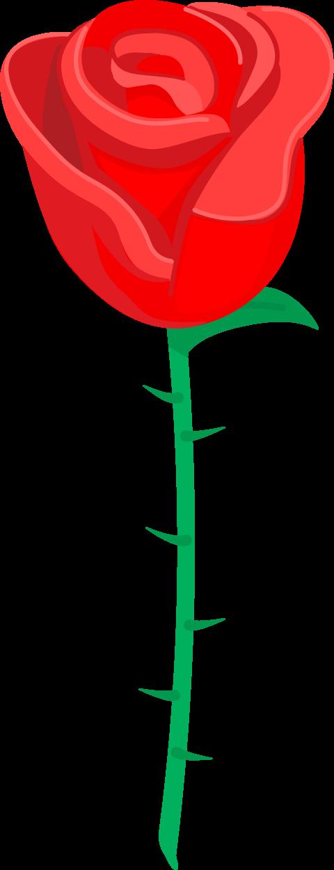 Spring_Rose.png
