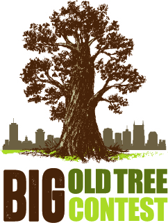 Volunteer for Nashville Tree Foundation - The Nashville Tree Foundation works to preserve and enhance Nashville's urban forests by planting trees in urban areas, identifying the oldest and largest trees in Davidson County, and educating the public about the value of trees. They are the longest running tree organization in Nashville's history with a myriad of programs to help the community get involved with trees, including the famous Big Ole Tree Contest where Nashville's biggest trees are cataloged and celebrated. Give them a visit if you've got a big old tree!