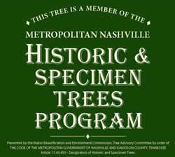 """Metro Historic & Specimen Tree Program - This metro-sponsored program allows a property owner to nominate their tree to be designated as """"Historic & Specimen."""" Metro will then deed the tree to the owner's property which gives the tree an extra bit of protection and special designation that will last in perpetuity with the property."""