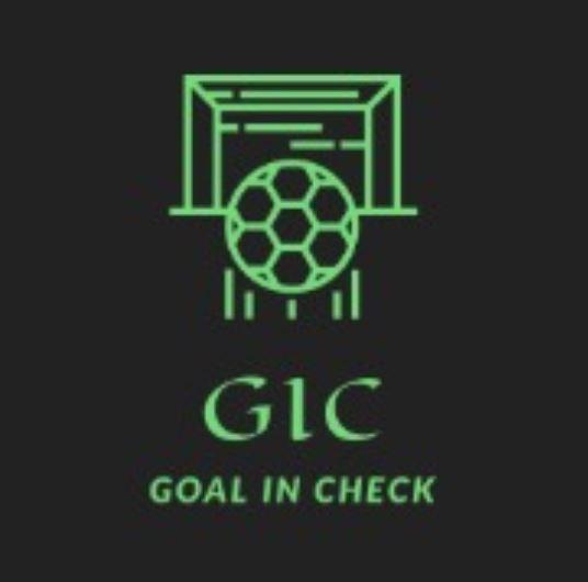 goal in check.JPG
