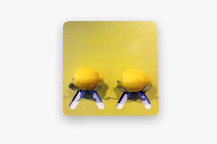 Majenta_Strongheart_Fruit Holder lemon