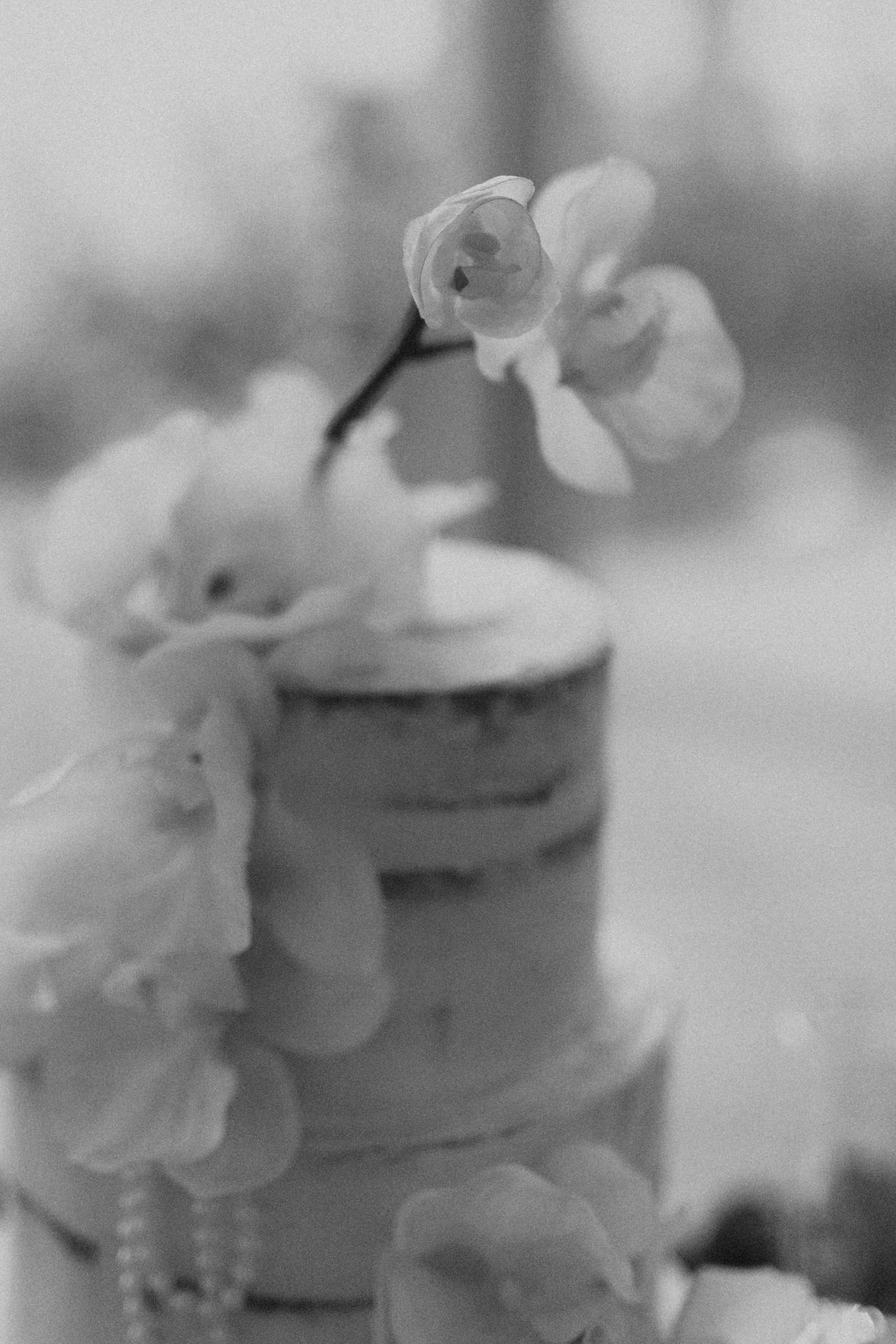 The-Terrace-Royal-Botanic-Gardens-Wedding-Emotions-and-Math-Photography-141.jpg