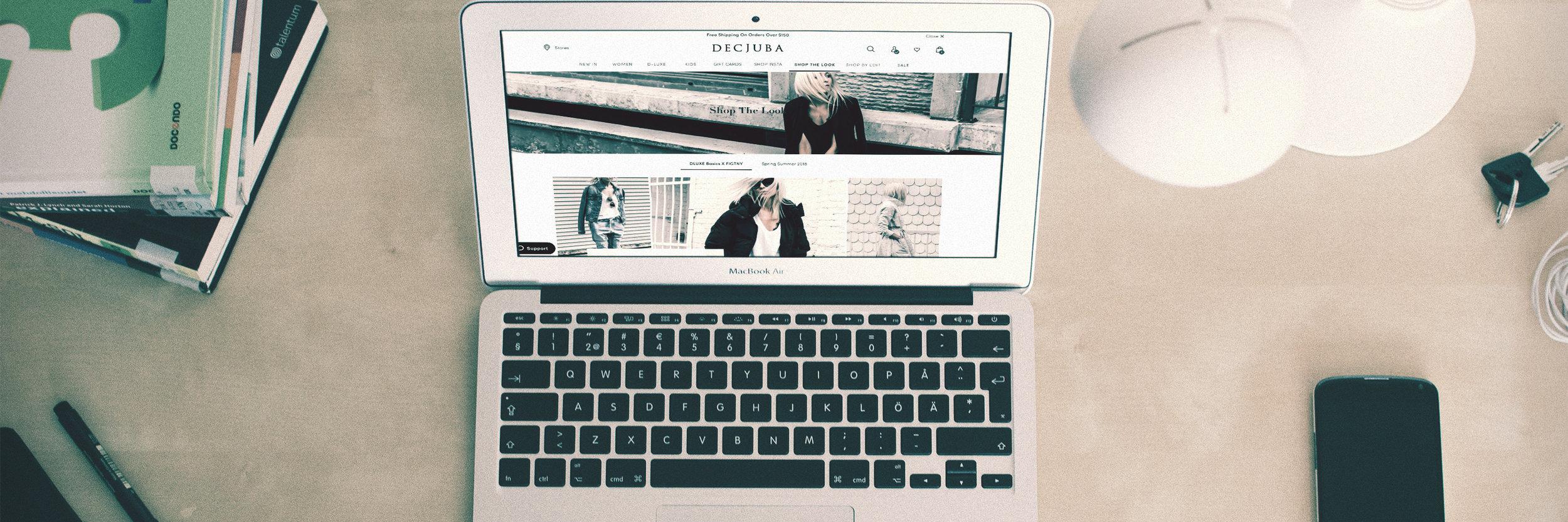 Decjuba Shopify Expert Full width.jpg
