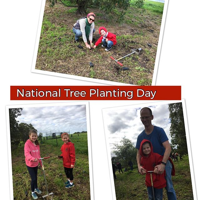 Care and action for the environment today!  10,000 trees planted, 5000 City of Casey volunteers.  #2040film #annaberkelmans #mindfulhabits #cityofcasey #climatefootprint #nationaltreeday